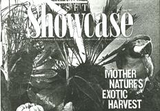 Showcase_fronte